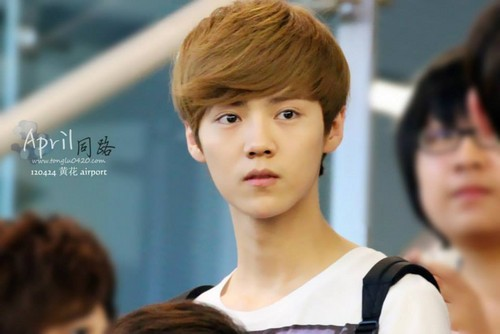 Luhan (루한) wallpaper with a portrait titled 120424 Beijing Airport to Changsha Airport