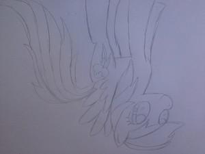 무지개, 레인 보우 Dash Sketch
