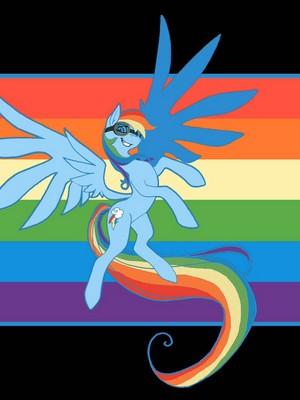 Taller version of arcobaleno dash