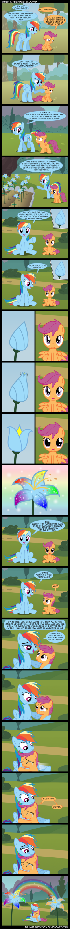 When A Pegasus Blooms