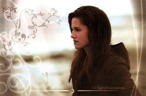 Bella রাজহাঁস beautiful <3