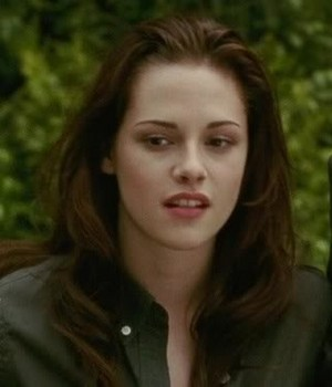 Bella cisne beautiful