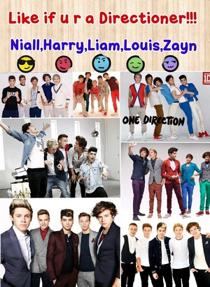 Comment if your a directioner