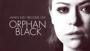 orphan black fond d'écran