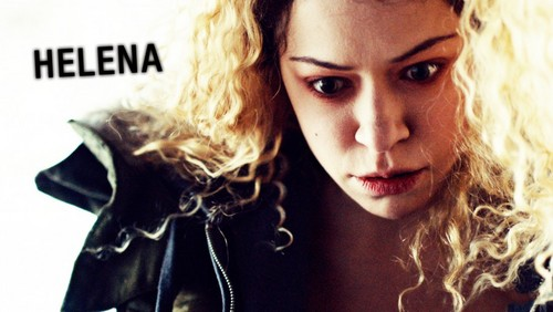 orphan black wallpaper probably with a portrait called orphan black wallpaper