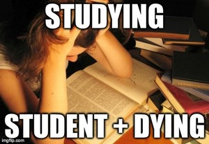 Studying is hard