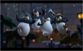 Epic Penguins! - penguins-of-madagascar photo