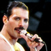 Freddie Mercury - queen icon