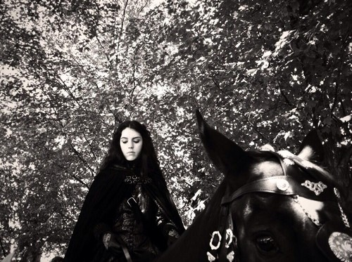 Reign [TV Show] wallpaper possibly containing a lippizan and a horse trail entitled Reign Cast - Behind The Scenes