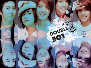 Double SS501