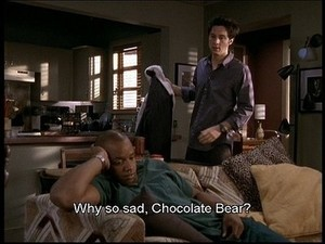 chocolate urso