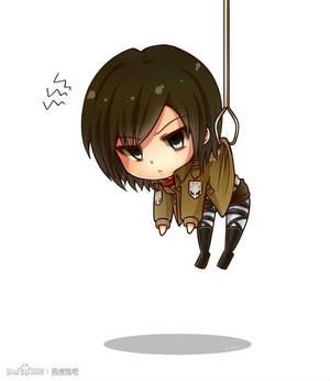 ちび Mikasa