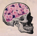 Skull/flowers