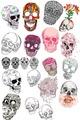 Flowers/Skulls