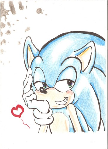 Sonic the Hedgehog wallpaper probably containing Anime called Sonic Amore