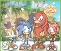 .:Poor Knuckles:. - sonic-the-hedgehog photo