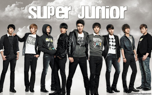 Super Junior images Super Junior Boy Bund HD wallpaper and background photos