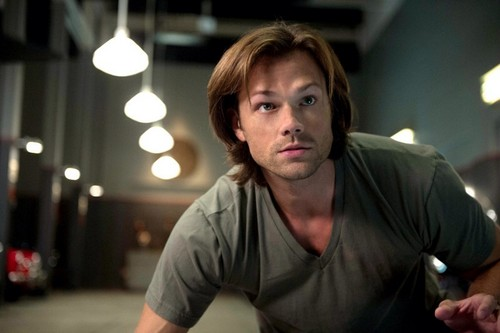 TV Male Characters kertas dinding titled Sam Winchester (Supernatural)