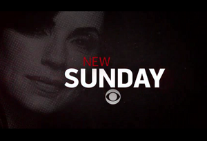 the good wife new sunday
