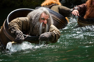 The Hobbit: The Desolation of Smaug [HD] Bilder