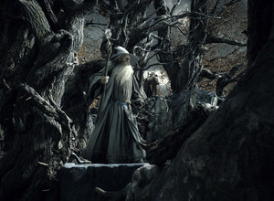 The Hobbit: The Desolation of Smaug [HD] প্রতিমূর্তি