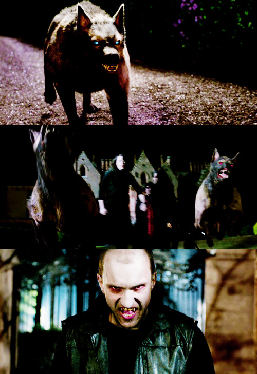 Strigoi x Psi hounds