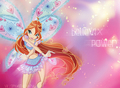 Winx club Bloom believix wallpaper - the-winx-club photo