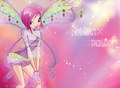 Winx club Tecna believix wallpaper - the-winx-club photo