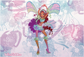 Winx Aisha Sophix wallpaper - the-winx-club photo