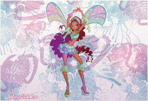Winx Aisha Sophix wallpaper
