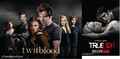 True Blood - Twilight  - true-blood photo