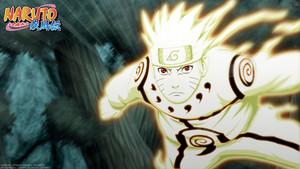 *Naruto Uzumaki*