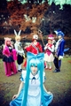 Alice in Musicland Cosplay