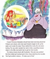 Walt Disney Books - The Little Mermaid: Ariel and the Mysterious World Above - walt-disney-characters photo