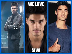 We प्यार Siva