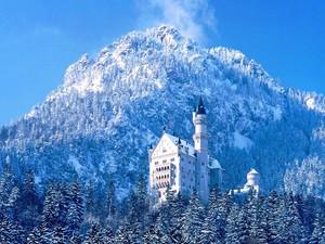 Winter 성