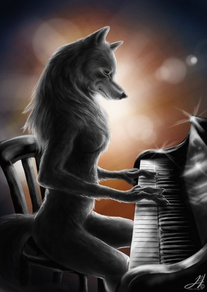 serigala, wolf playing Piano