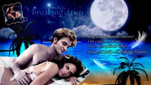 Edward and Bella's honeymoon 팬 art