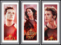 catching fire - the-hunger-games fan art