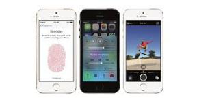 Fingerprint Recognition in iPhone