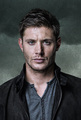 Supernatural season 9 - jared-padalecki-and-jensen-ackles photo