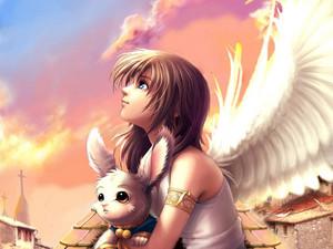 animê angel