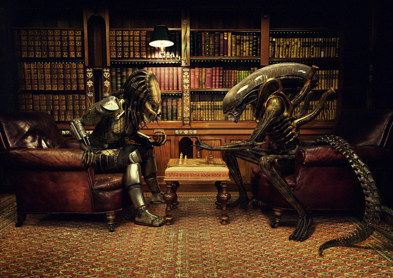 alien images alien vs. predator hd wallpaper and background photos