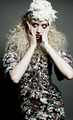 Allison Harvard for Gee Plamenco - allison-harvard photo