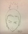 Shikamaru Nara - anime fan art