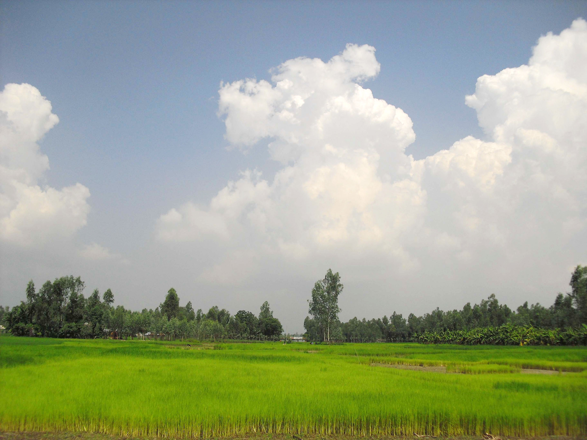 Village Shanto