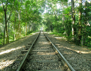 Train Line Shanto