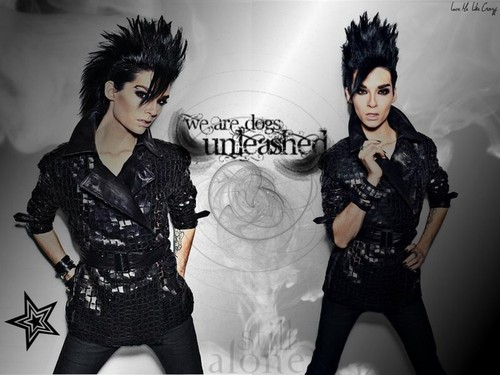Bill Kaulitz achtergrond probably with a well dressed person and a hip boot titled Bill Kaulitz