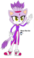 Blaze The Cat - blaze-the-cat photo