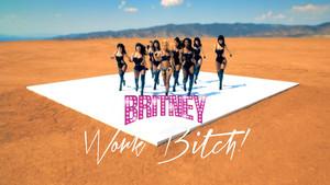 Britney Spears Work bitch, kahaba !